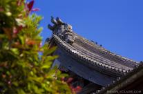 Soji-ji Temple Roof