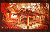 Temple Among Vivid Autumn Leaves