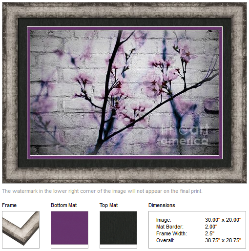 Grunge Cherry Blossoms Over White Brick Wall by Beverly Claire Designs