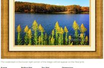 Autumn Lake with Canada Goldenrod