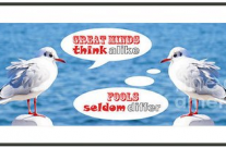 Positive-Thinking and Negative-Thinking Seagull Twins