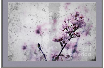 Grunge Cherry Blossoms Over Grey Concrete Wall