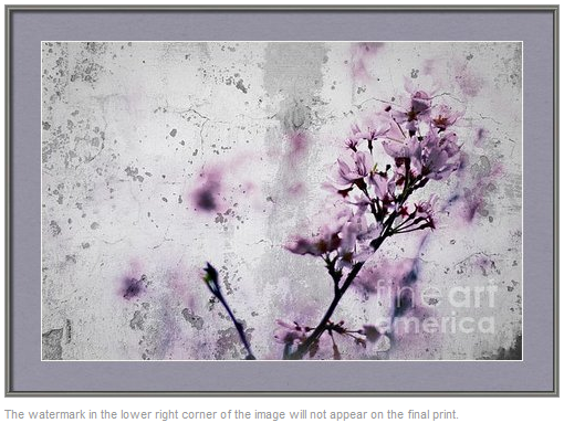Grunge Cherry Blossoms Over Grey Concrete Wall by Beverly Claire Designs