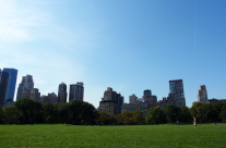 At Central Park