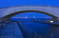 Bay Bridge from Rinko Park