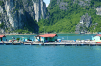 Floating Villages of Halong Bay