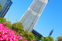 Landmark Tower in Spring