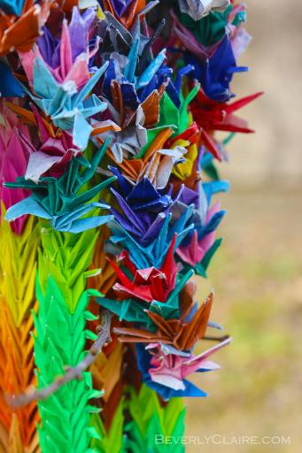 Paper cranes after the rain.