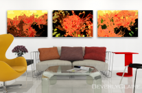 Resurrection Lilies in a Contemporary Room